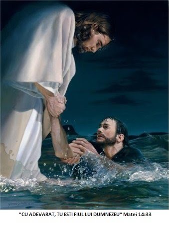 imagenes-de-reino-jesus-sacando-del-agua-a-pedro